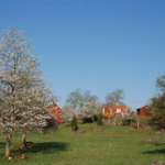 Vandra i Sverige – Skirö i Småland är ett av Världsnaturfondens 10 tips
