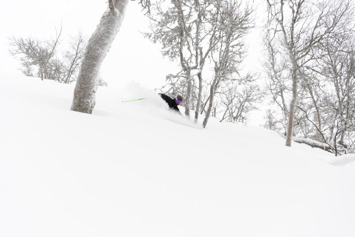 SkiStar meddelar snödjup för sina Skandinaviska destinationer.