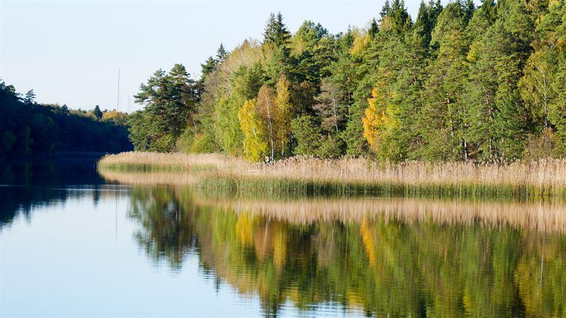 Vandra runt en sjö är en av alla utomhusaktiviteter
