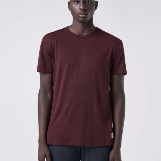 DAG Men's T-shirt - Rusty red melange