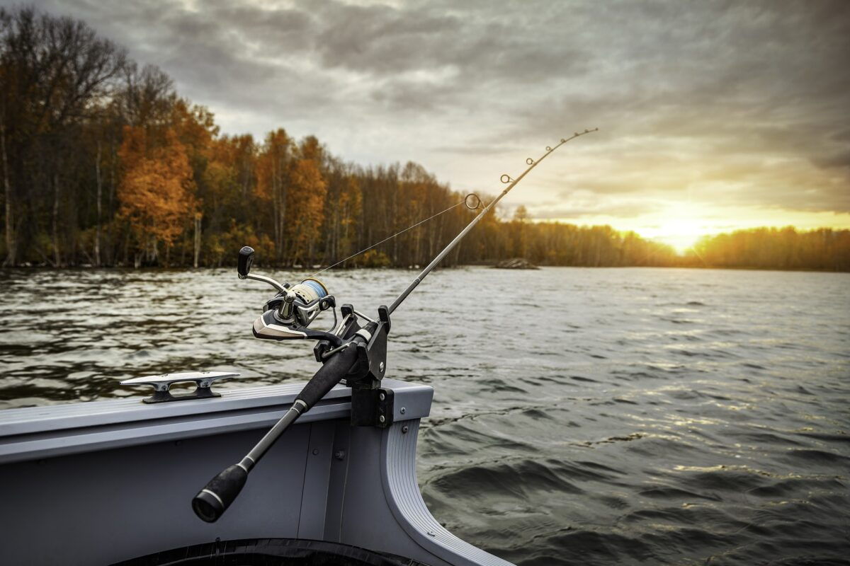 Fishfinder fiska fiskebåt